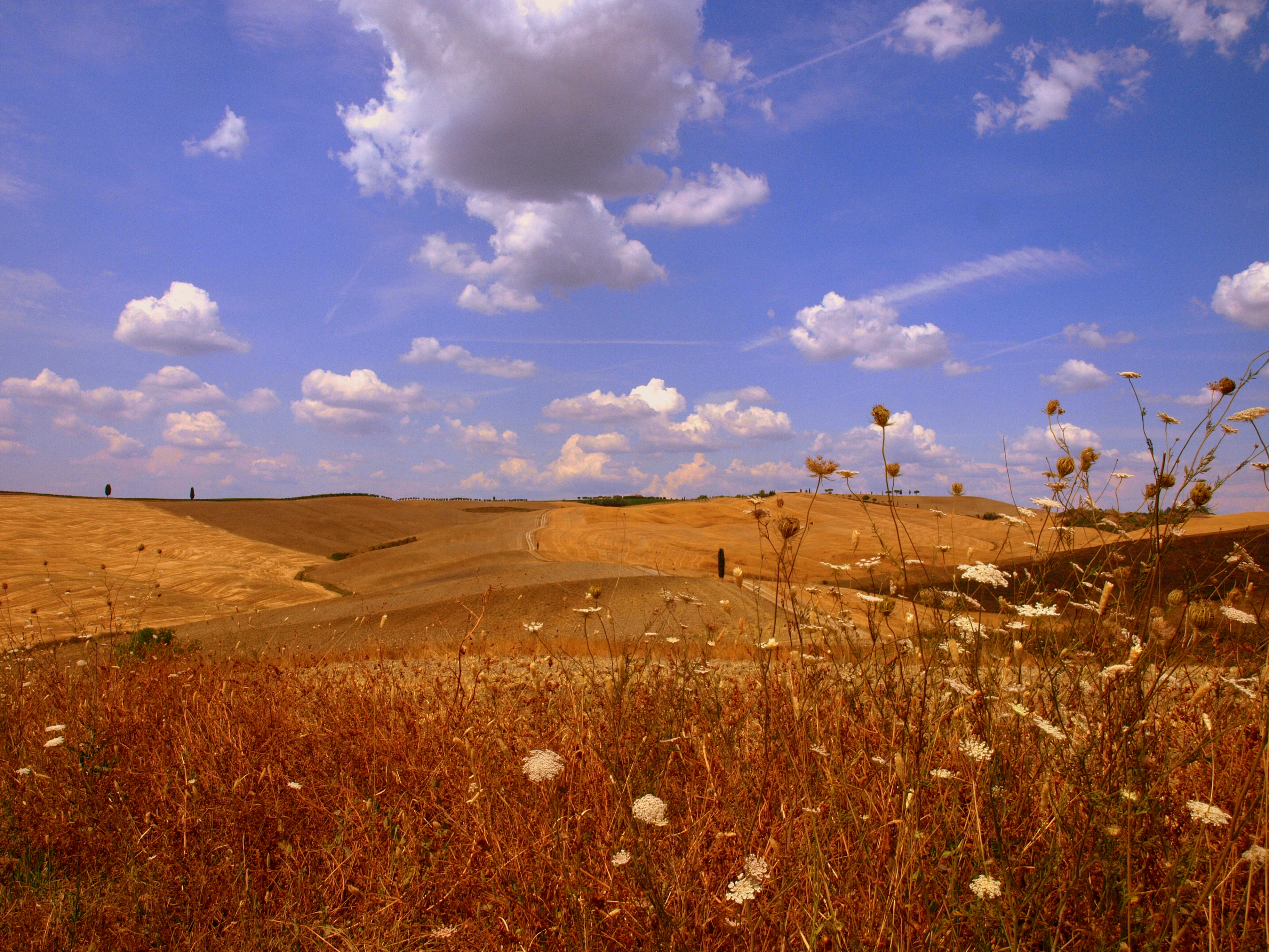 Val d'Orcia 3